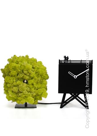 Часы настольные Progetti Birdwatching Clock