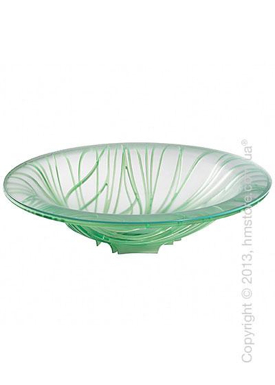 Фруктовница с чашей Bugatti Flora, Зеленая