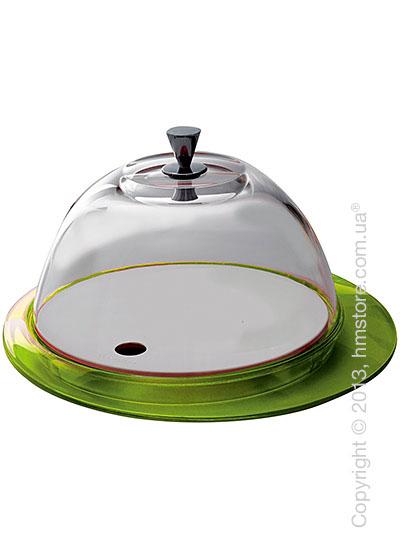 Блюдо с крышкой Bugatti Glamour Cake Tray and Food Tray with Glass Cover, Зеленое