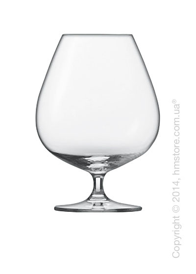 Набор бокалов для коньяка Schott Zwiesel Bar Specials 884 мл на 6 персон
