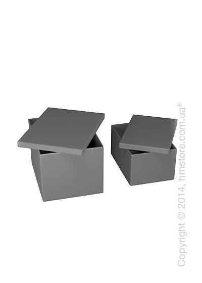 Набор ящиков Calligaris Clever, 2 предмета, PVC Grey