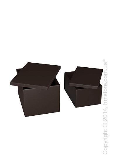 Набор ящиков Calligaris Clever, 2 предмета, PVC Brown
