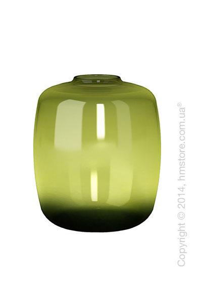 Ваза Calligaris Blanco S, Glass transparent green