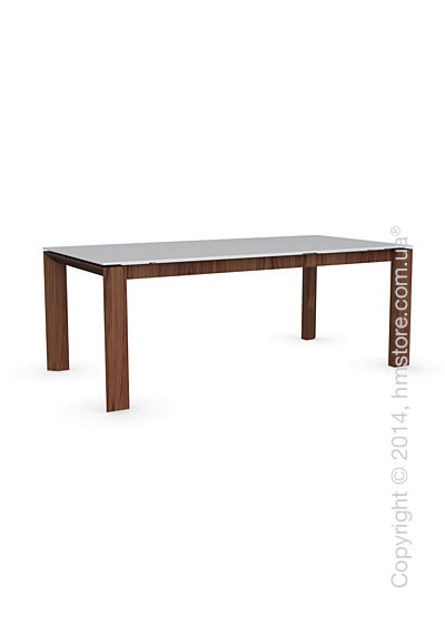 Стол Calligaris Omnia Wood, Frosted tempered glass extrawhite and Veneer walnut