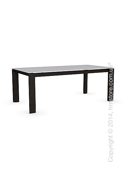Стол Calligaris Omnia Wood, Frosted tempered glass extrawhite and Veneer wenge