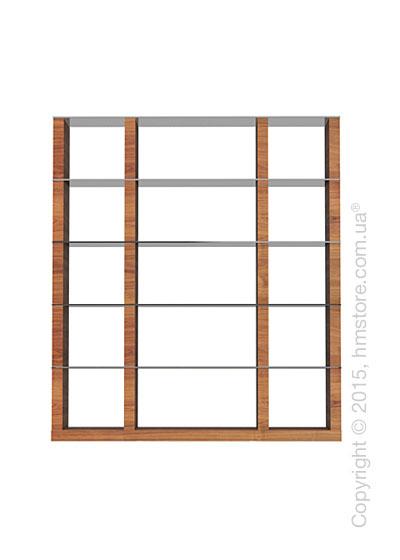Книжный шкаф Calligaris Lib, Tall double-sided modular bookcase, Veneer walnut and Glass smoked grey