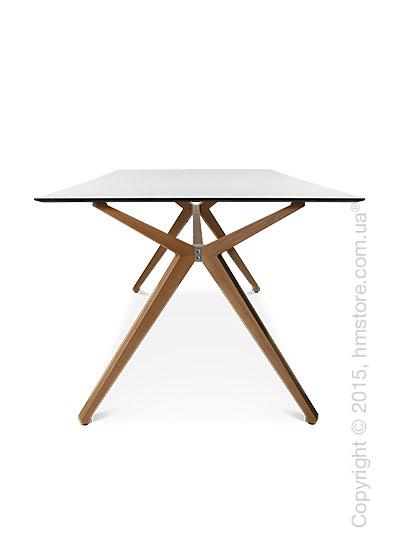 Стол Wagner W-Table Holzgestell 900x1800 мм, Матовое стекло