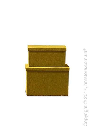 Набор ящиков Calligaris Clever, 2 предмета, Polyester felt mustard yellow