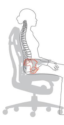 Спинка кресла Herman Miller Embody и сидение соответствуют форме тела человека